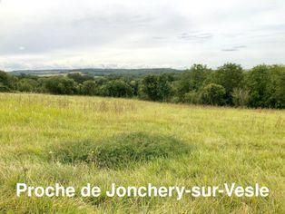 Annonce vente Terrain plein sud jonchery-sur-vesle