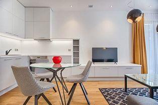 Annonce vente Appartement avec cuisine équipée lyon 1er arrondissement