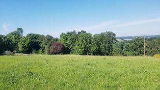Annonce vente Terrain avec terrain constructible Poudenx
