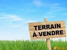 Annonce vente Terrain allouville-bellefosse