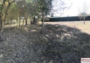 Annonce vente Terrain avec terrain constructible la magdelaine-sur-tarn