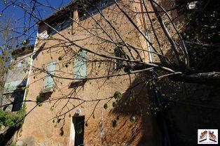 Annonce vente Maison avec jardin saint-martin