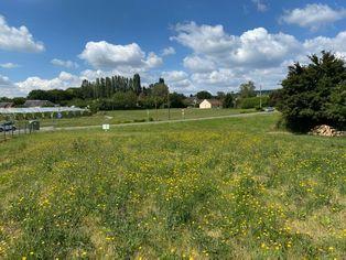 Annonce vente Terrain avec vue dégagée saint-martin-d'auxigny