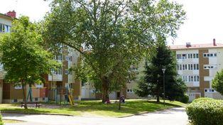 Annonce location Appartement avec rangements baccarat