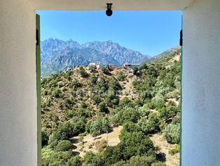 Annonce vente Maison avec terrasse moltifao