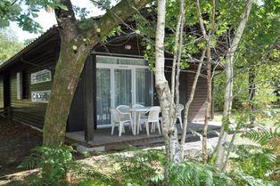 Annonce location Maison avec piscine lacanau