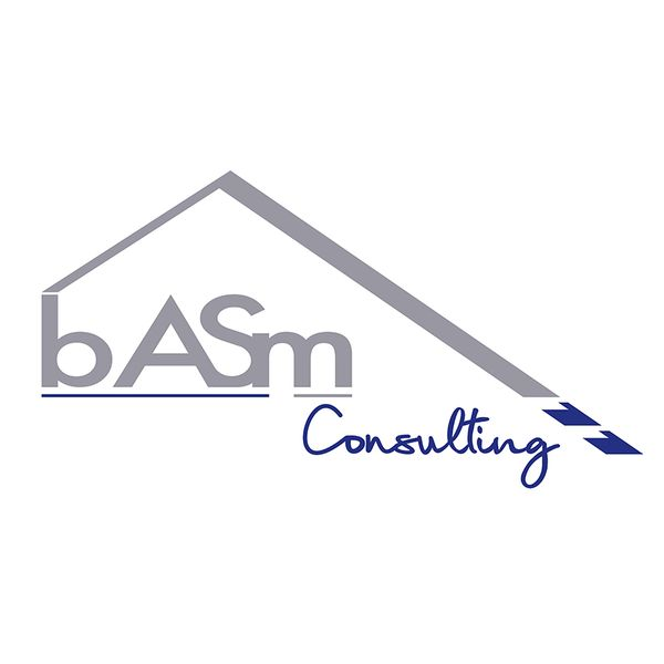 B.A.S.M CONSULTING