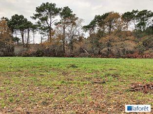 Annonce vente Terrain avec forêt plouhinec