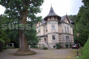 Annonce vente Château breuchotte