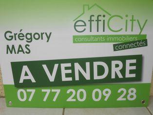 Annonce vente Maison avec garage saint-martin-la-plaine