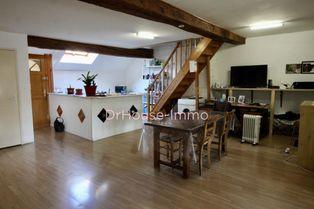 Annonce vente Appartement en duplex verdun-sur-le-doubs
