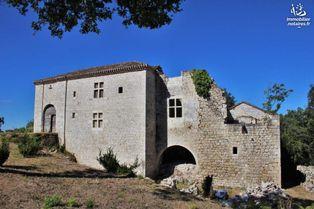 Annonce vente Château avec piscine touffailles