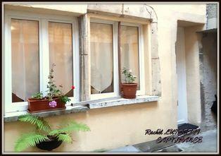 Annonce vente Maison avec terrasse saint-nicolas-de-port