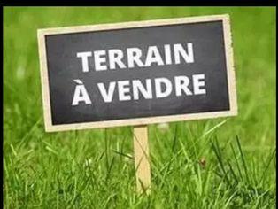 Annonce vente Terrain lunéville