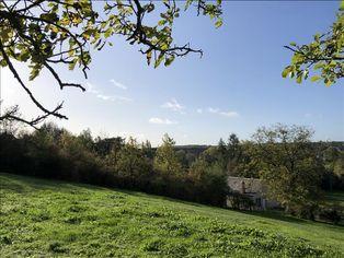 Annonce vente Terrain avec vue dégagée saint-florent-sur-cher