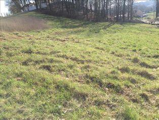 Annonce vente Terrain avec terrain constructible voutezac