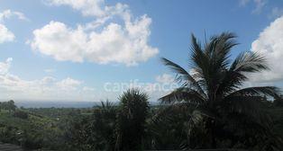 Annonce vente Maison avec terrasse capesterre-belle-eau