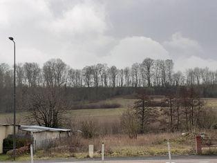 Annonce vente Terrain anneville-sur-scie