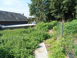 Annonce vente Maison avec cave lesquielles-saint-germain