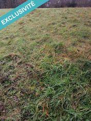 Annonce vente Terrain avec terrain constructible saint-paterne-racan