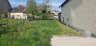 Annonce vente Maison avec corps de ferme gevigney-et-mercey