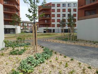 Annonce location Appartement avec parking tourcoing
