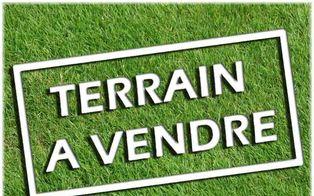 Annonce vente Terrain saint-mars-du-désert