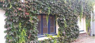 Annonce vente Maison aubry-du-hainaut