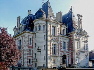 Annonce vente Château avec terrasse saint-biez-en-belin