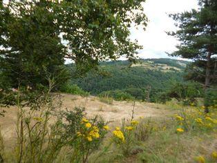 Annonce vente Terrain saint-ferréol-d'auroure