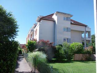 Annonce vente Appartement avec terrasse blotzheim