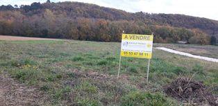Annonce vente Terrain verdoyant agen