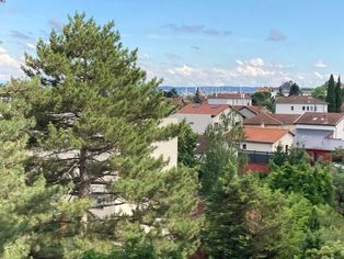 Annonce location Appartement oullins