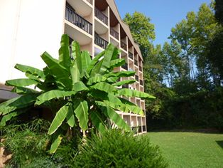 Annonce location Appartement avec terrasse dax