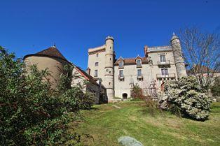Annonce vente Château avec terrasse givry