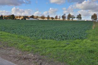 Annonce vente Terrain avec terrain constructible la rivière-de-corps