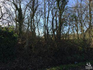 Annonce vente Terrain avec terrain constructible beaumont-de-lomagne