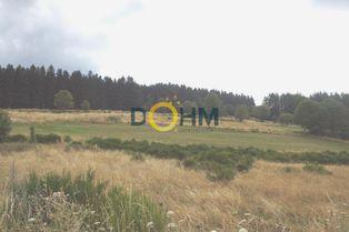 Annonce vente Terrain au calme dunières
