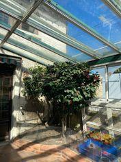 Annonce vente Maison avec cave noyen-sur-sarthe
