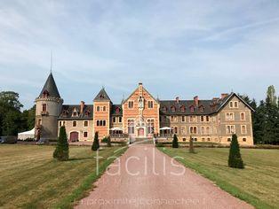 Annonce vente Château avec piscine lurcy-lévis