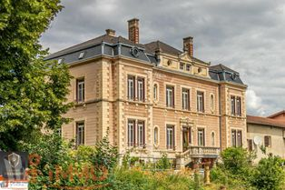 Annonce vente Château lozanne