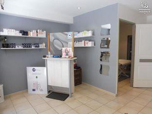 Annonce vente Maison beaumont-sur-sarthe