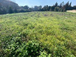 Annonce vente Terrain avec terrain constructible ouveillan