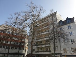 Annonce vente Appartement lumineux strasbourg