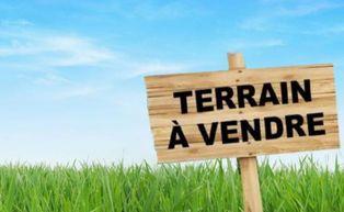 Annonce vente Terrain verdoyant hem-lenglet