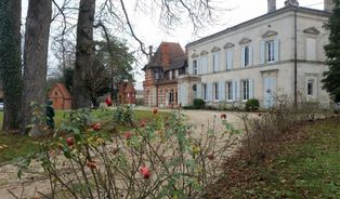 Annonce vente Château saint-dizier